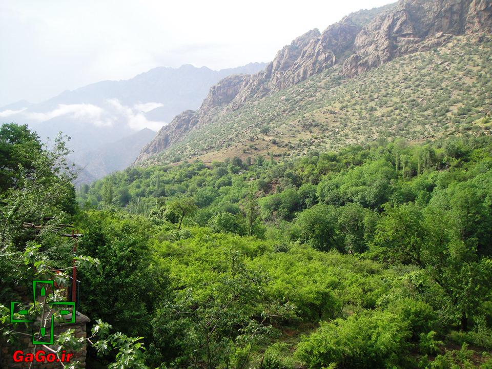 روستای داریان